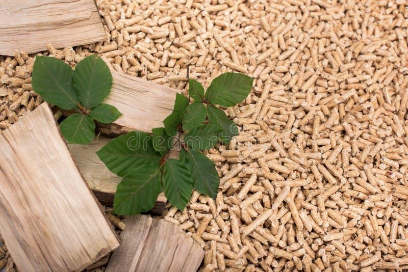 Biomasa de hojas caducas del roble - madera, pelotillas y hojas foto de archivo libre de regalías