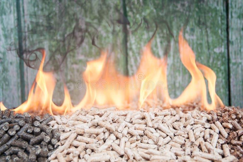 Biomasa de las pelotillas foto de archivo libre de regalías