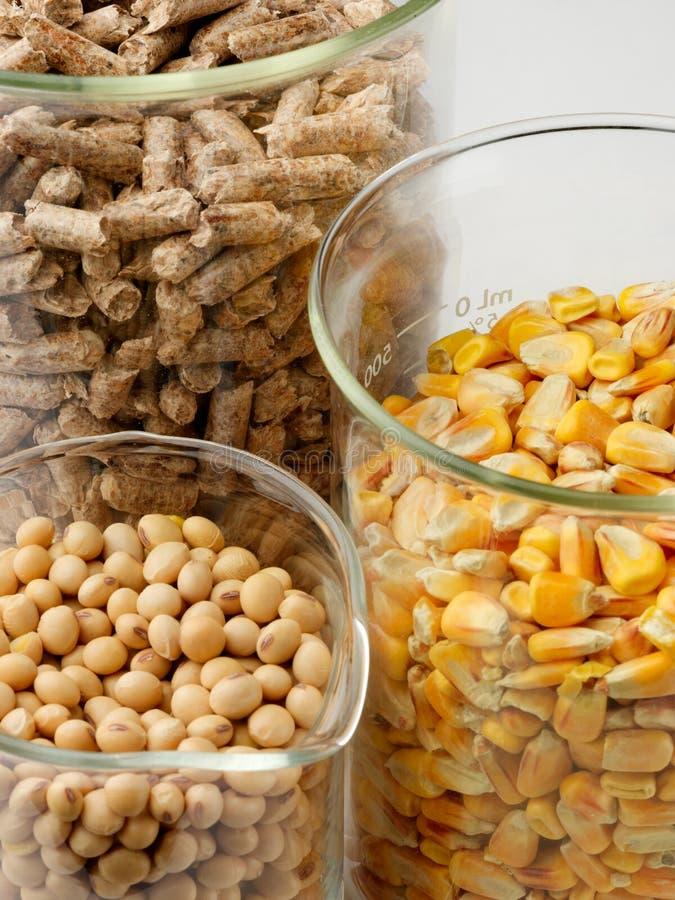 Download Biomass Laboratory Stock Photos - Image: 15941283