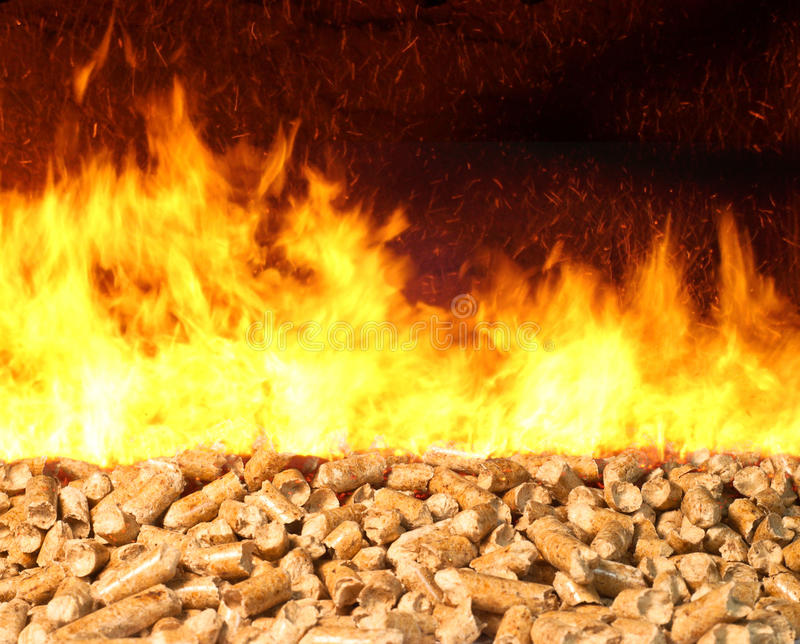 Biomass Pellet on Fire. Combustion of biomass pellets with bright fire and flames royalty free stock image