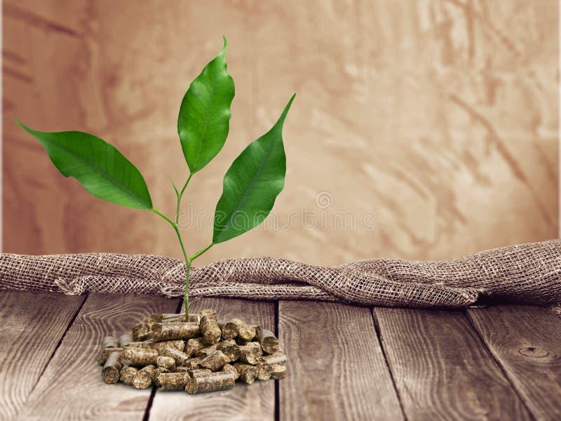 biomassa royalty-vrije stock foto