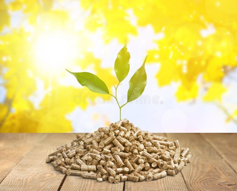 biomassa royalty-vrije stock foto's