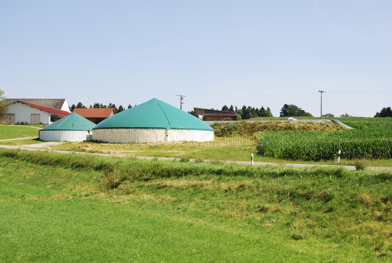 Biomassa stock fotografie