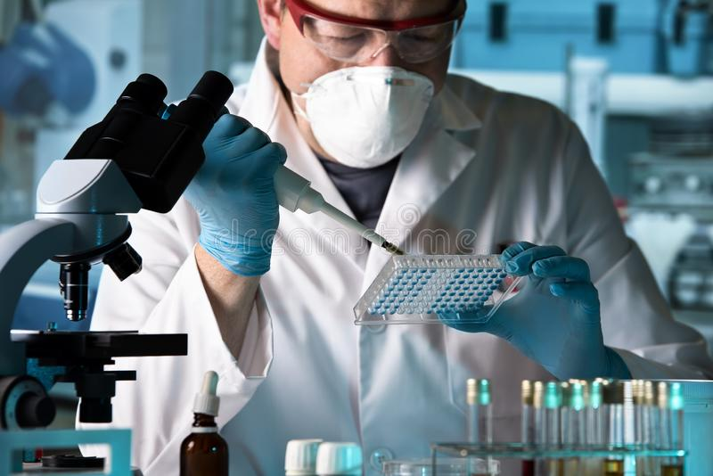 Biomedical engineer working with samples in microplate in the la stock photo