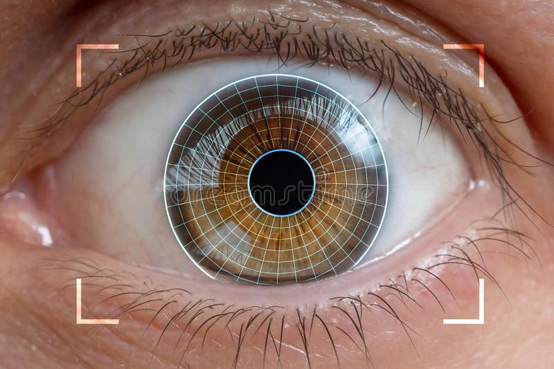 Biometrics, eye scanning and recognition concept. stock image