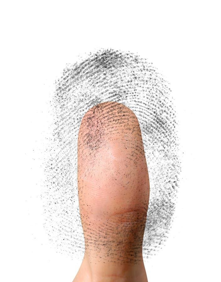 Biometrisches Kennzeichen lizenzfreie abbildung