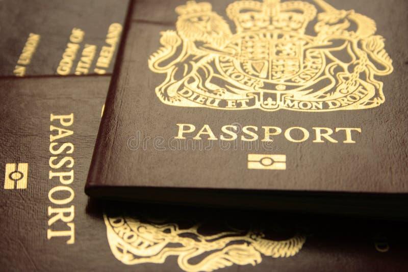 Biometrisches Passports2 stockfoto