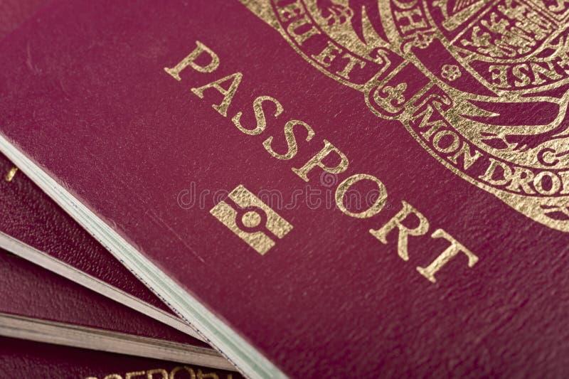 biometryczny paszport zdjęcie stock