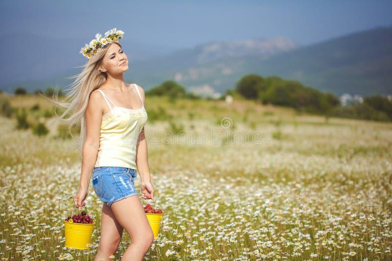 Bionda attraente nel campo della camomilla. Giovane donna in corona fotografia stock