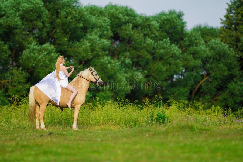 Bionda della donna dell'utente con capelli lunghi in un vestito bianco con un treno che posa su un cavallo di palamino fotografia stock libera da diritti