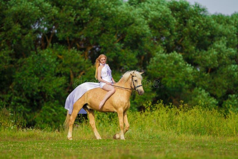 Bionda della donna dell'utente con capelli lunghi in un vestito bianco con un treno che posa su un cavallo di palamino fotografie stock libere da diritti
