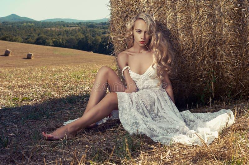 Bionda sexy in hayfield immagini stock