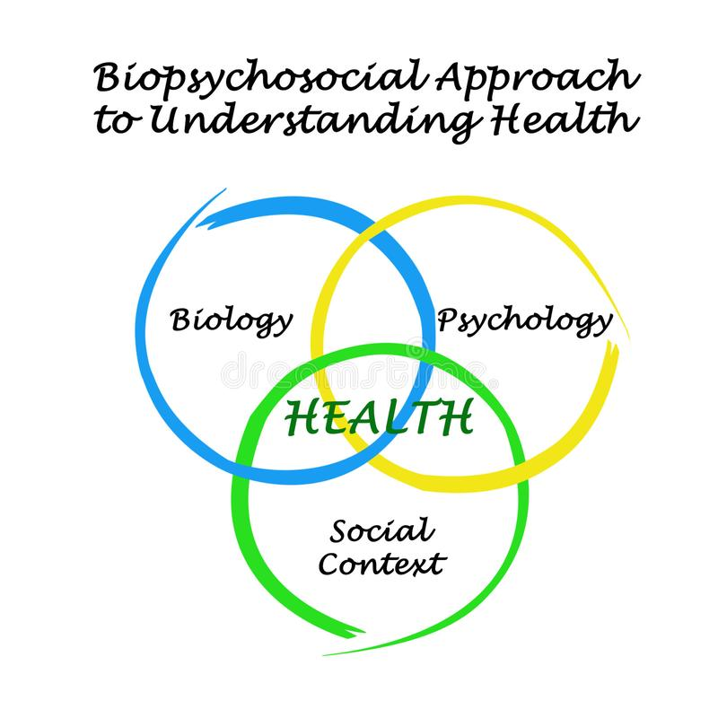 Biopsychosocialbenadering van het Begrip van Gezondheid stock illustratie