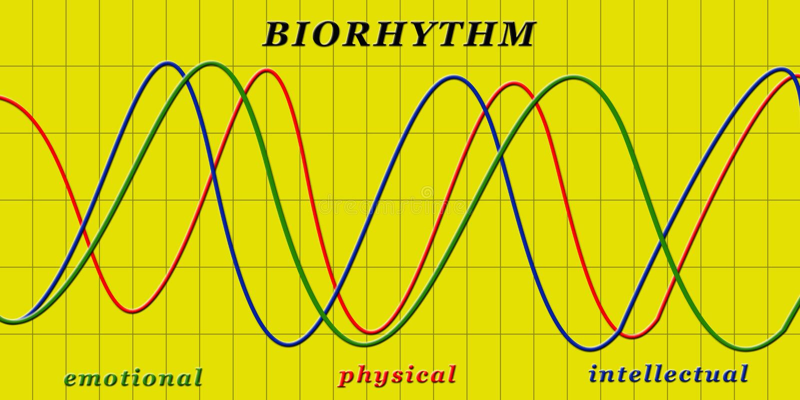 biorytm stock illustrationer