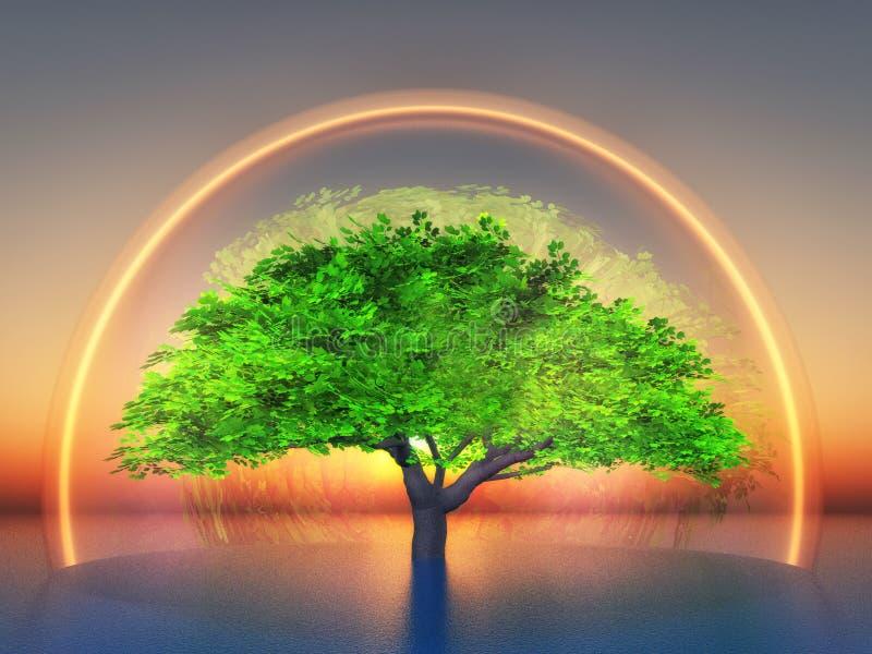 Biosphere. A tree inside a transparent light bubble royalty free illustration