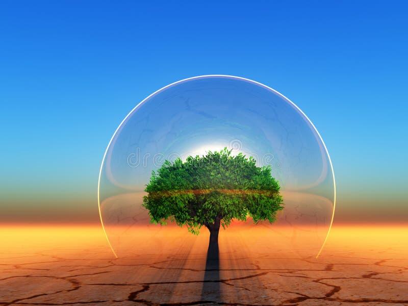 Biosphere. Tree inside a transparent sphere on sunset background vector illustration