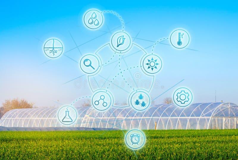 Biotechnologie in de agro-culturele industrie Hoogwaardige technologie?n en innovaties De landbouw en agronomie Selectie van land stock foto