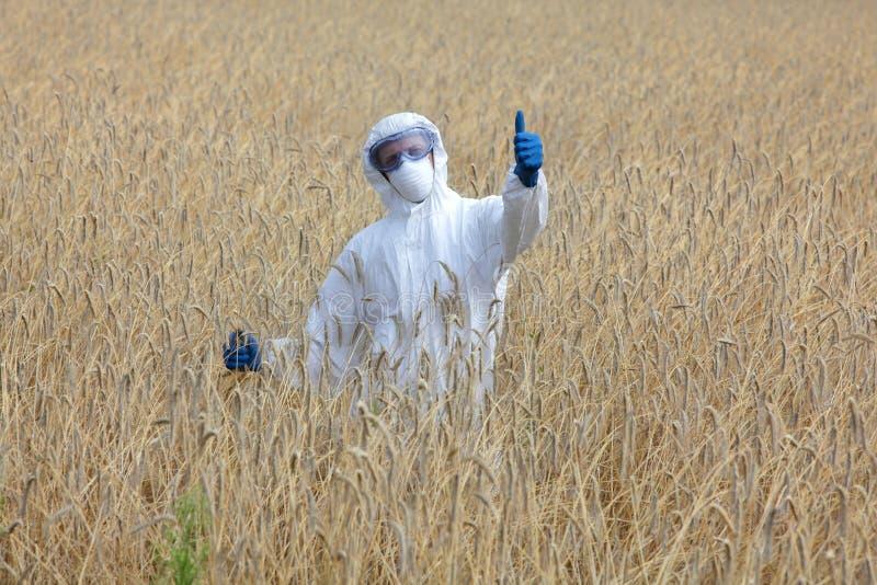 Biotechnologist με τον αντίχειρα επάνω στη χειρονομία στον τομέα στοκ φωτογραφίες