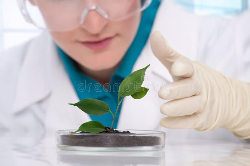 biotechnology fotografia de stock
