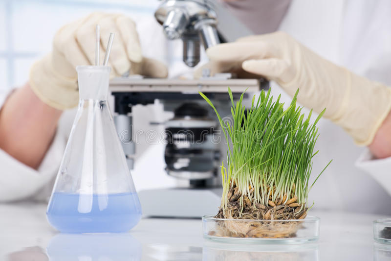 biotechnology imagens de stock
