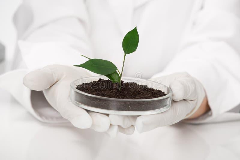 biotechnology foto de stock royalty free