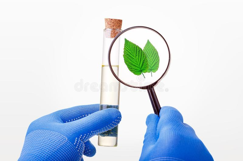 Biotechnology concept with scientist in lab. stock photos
