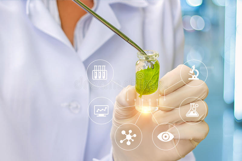 Biotechnology researcher concept or biotech science. A biologist conducts an experiment royalty free stock photo