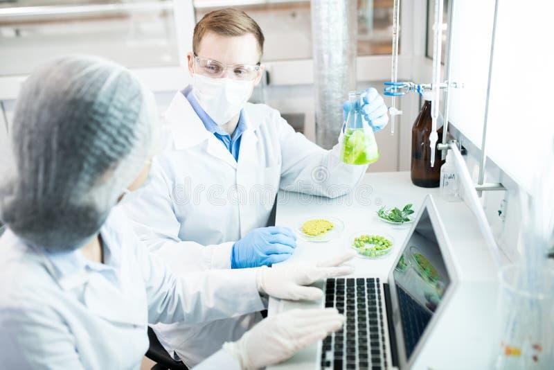 Biowetenschappers in Laboratorium royalty-vrije stock afbeelding