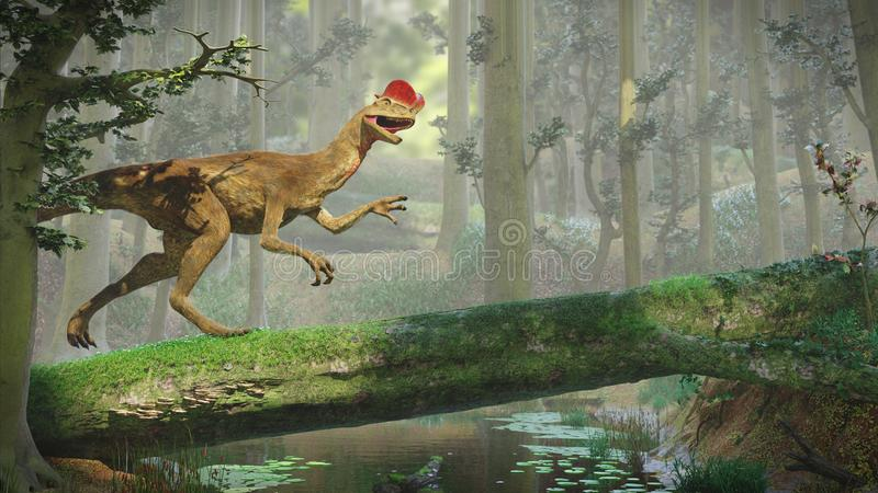 Dilophosaurus, theropod dinosaur inside a forest 3d illustration. Bipedal predator dino in prehistoric landscape royalty free stock photography
