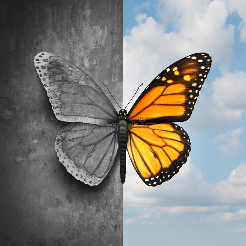 Bipolar Mental Disorder. Abstract psychological illness concept as a butterfly divided as one side in grey and sad colors with the other in full bright tones as royalty free illustration