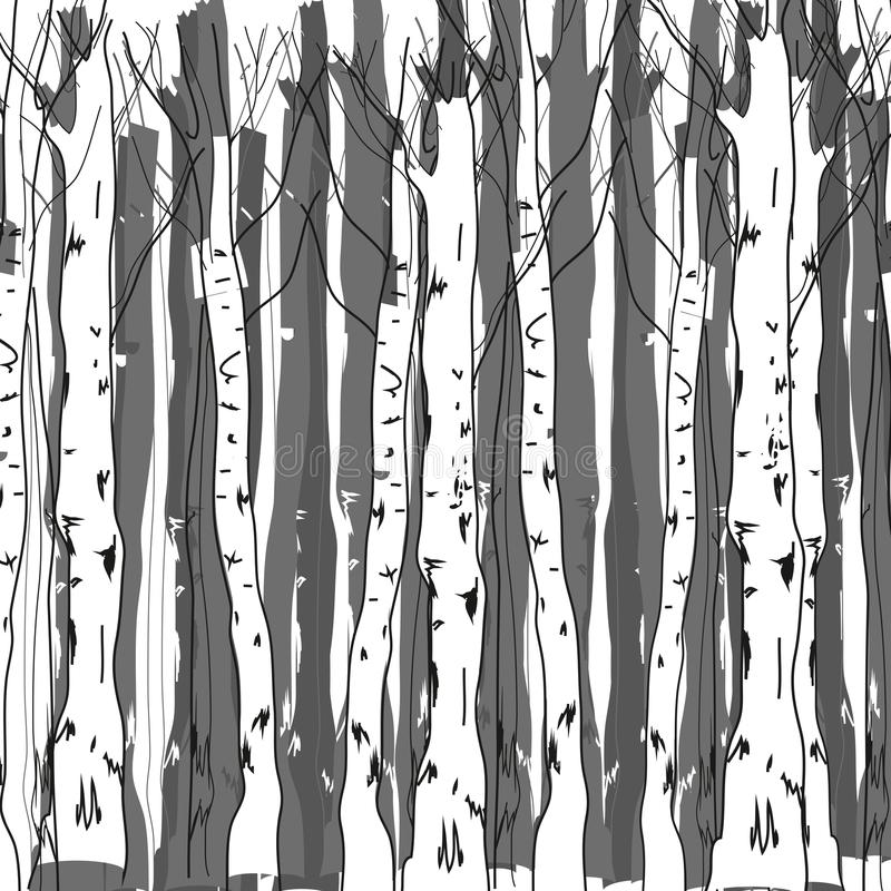 Free Birch Forest Royalty Free Stock Photo - 46890035