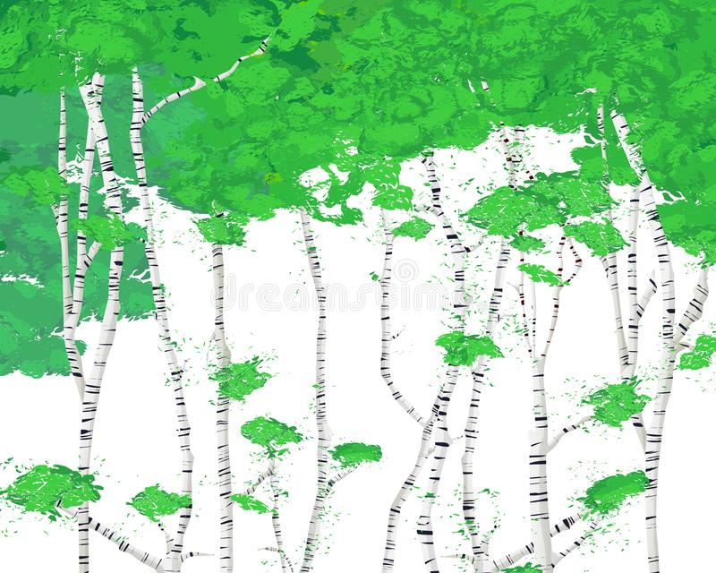 Birch grove background for your design. Vector illustration royalty free illustration