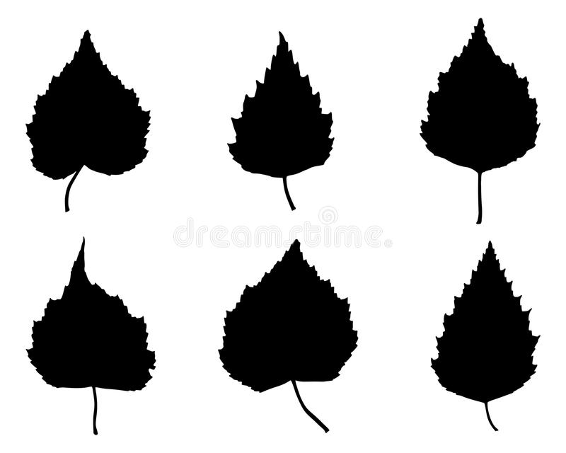 Download Birch leaves stock vector. Image of fall, illustration - 25480888