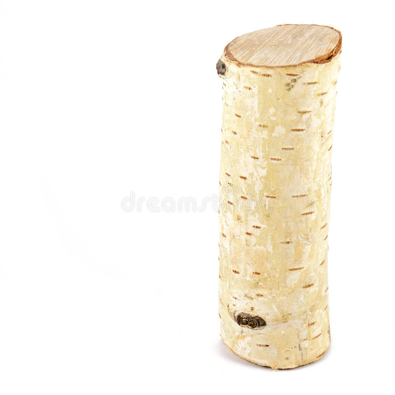 Birch log isolated on white royalty free stock image
