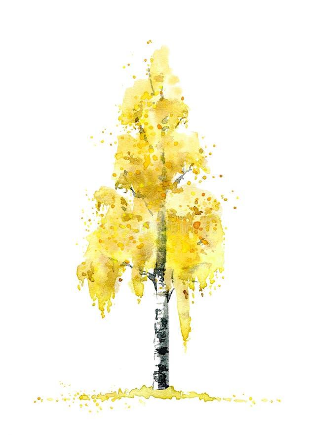 Oak In Autumn.Deciduous Tree. Watercolor Hand Drawn ...