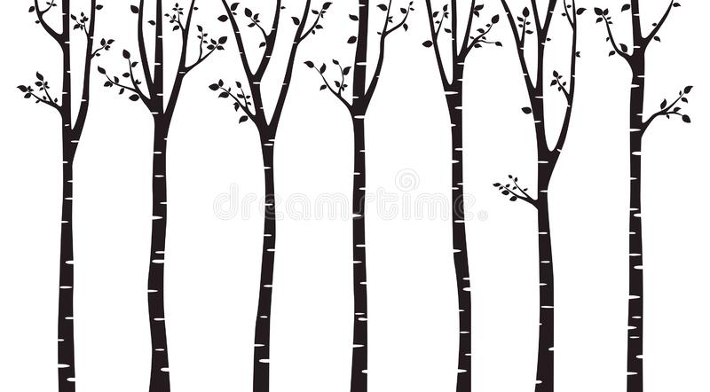 Birch tree wood silhouette on white background. For background, promotion, sale, template, banner, flayer, poster and other stock illustration