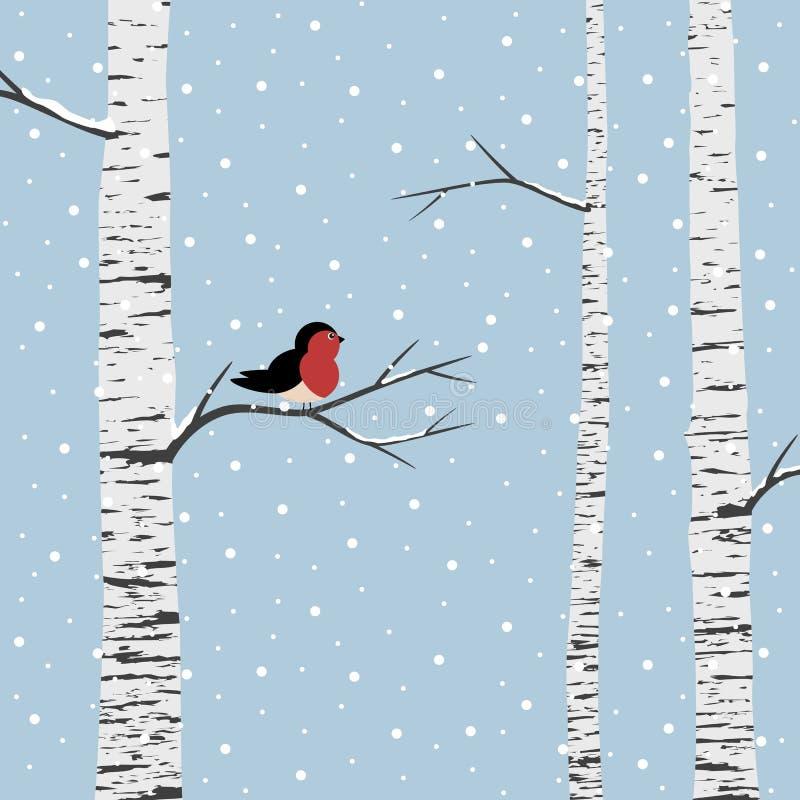 Birch trees royalty free illustration