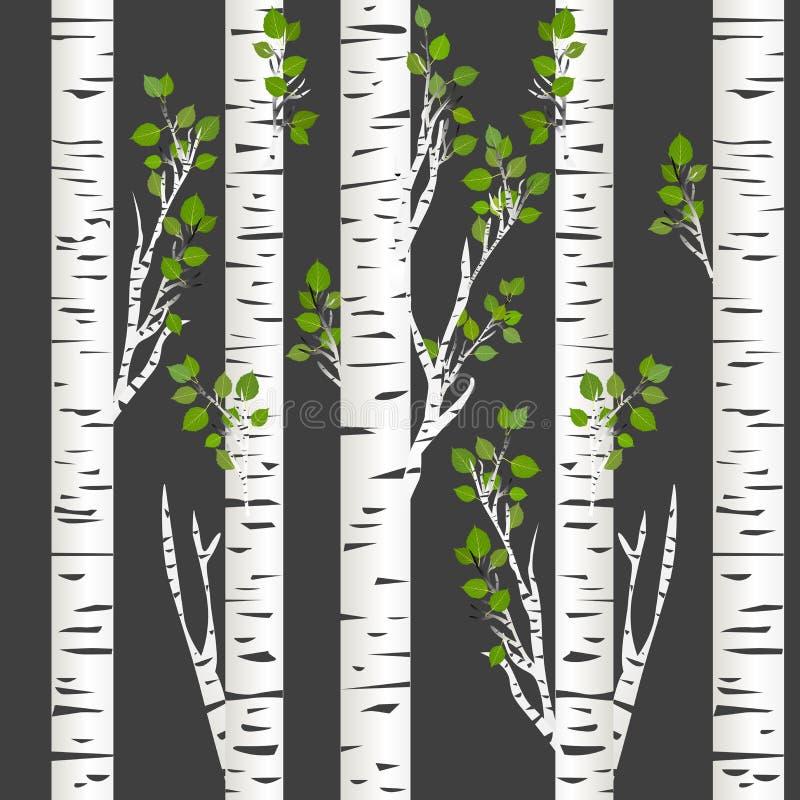 Birch trunks in night. Illustration of Birch trunks in night vector illustration