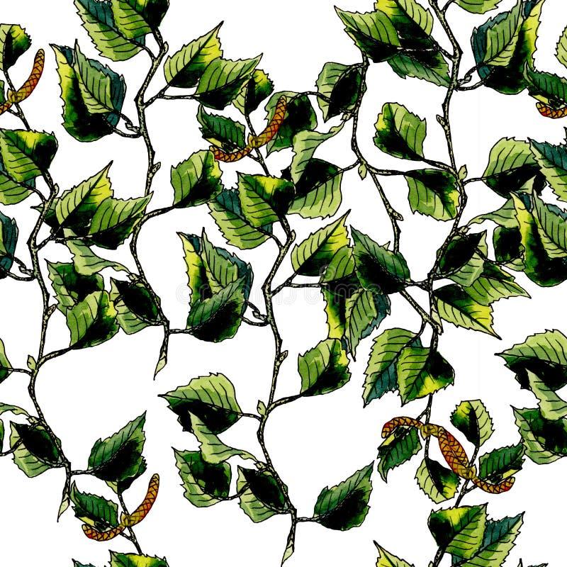 Birch watercolor seamless pattern stock photos