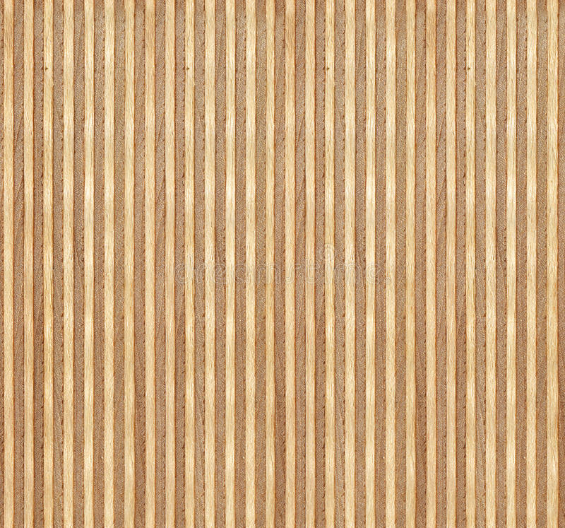 Free Birch Wood Section Texture Royalty Free Stock Photography - 33953077
