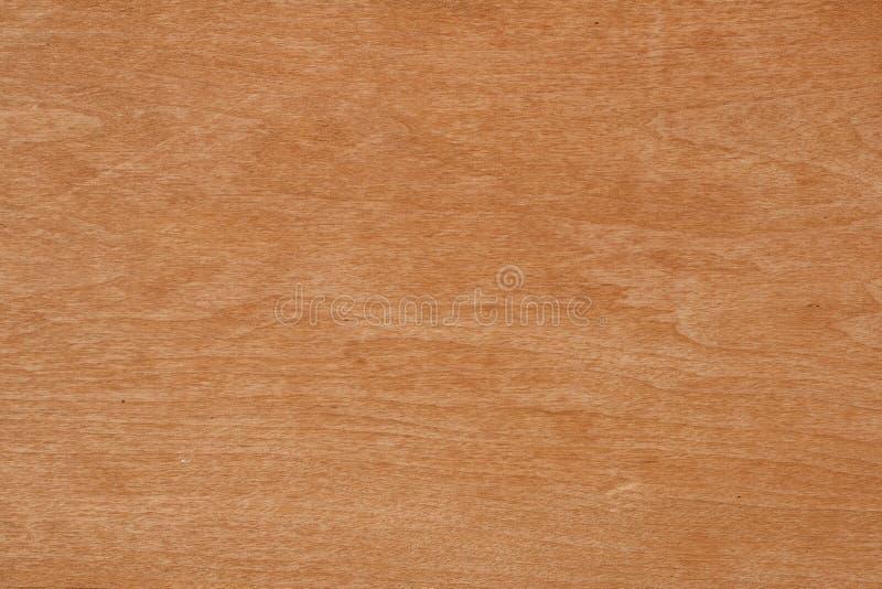 Birch wood texture stock image