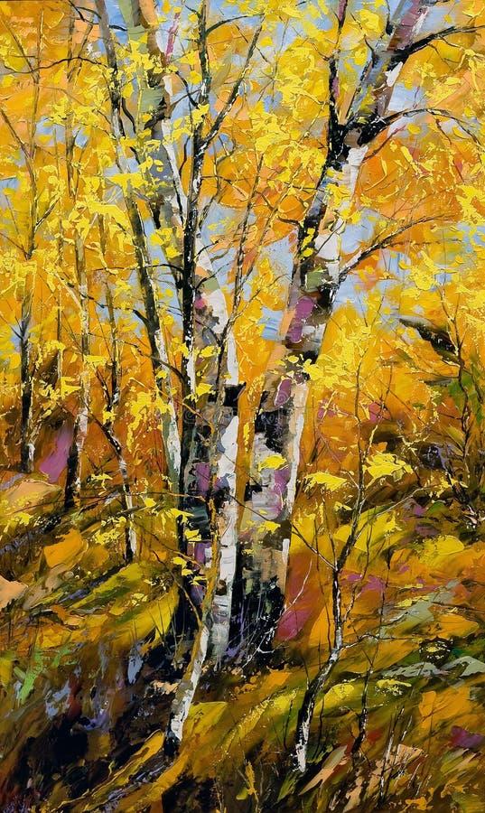 Birches in autumn wood stock photos