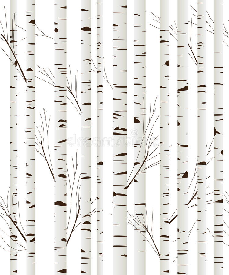 Free Birchwood Background Royalty Free Stock Photo - 31068665