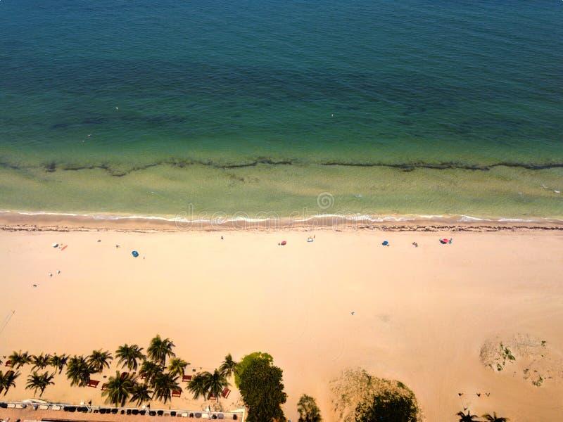 Bird& x27 άποψη ματιών του s της παραλίας τραχίνωτων στοκ φωτογραφίες με δικαίωμα ελεύθερης χρήσης