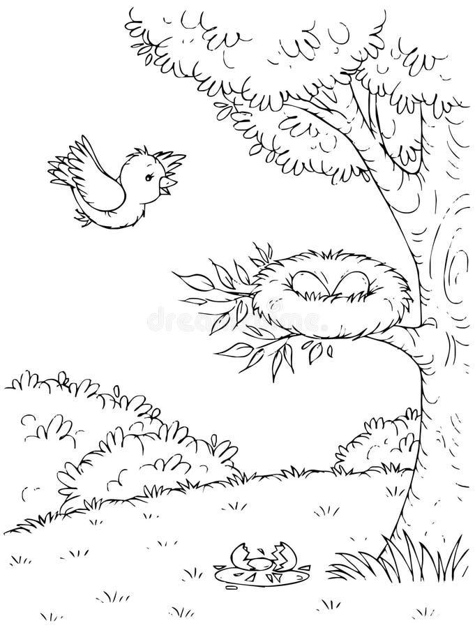 Download Bird stock illustration. Image of nature, nest, children - 14961430