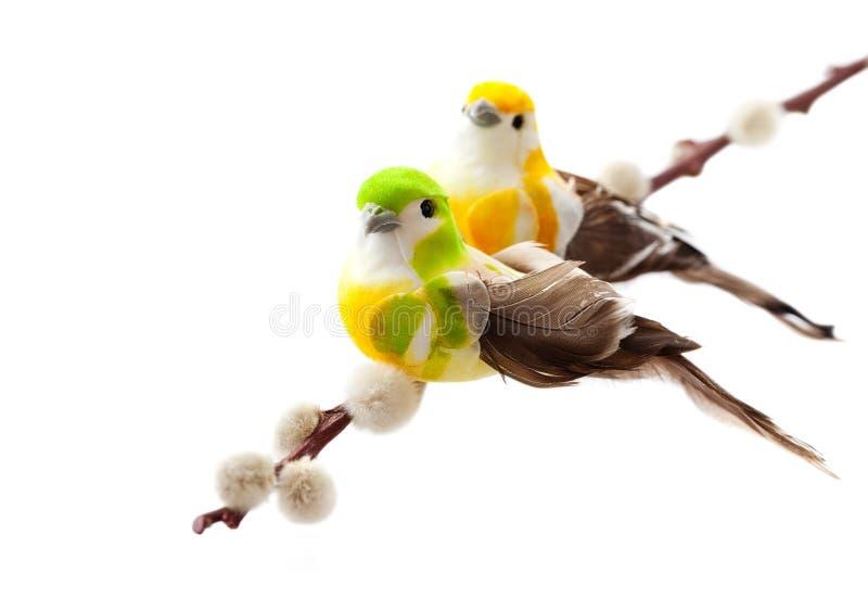 Download Bird stock photo. Image of beauty, celebration, background - 23485840