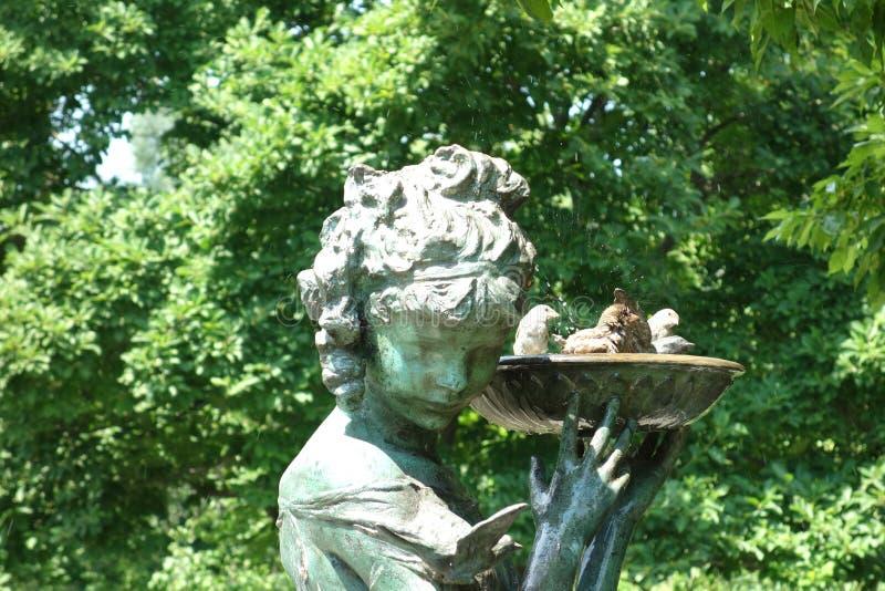 Bird Bath royalty free stock photography