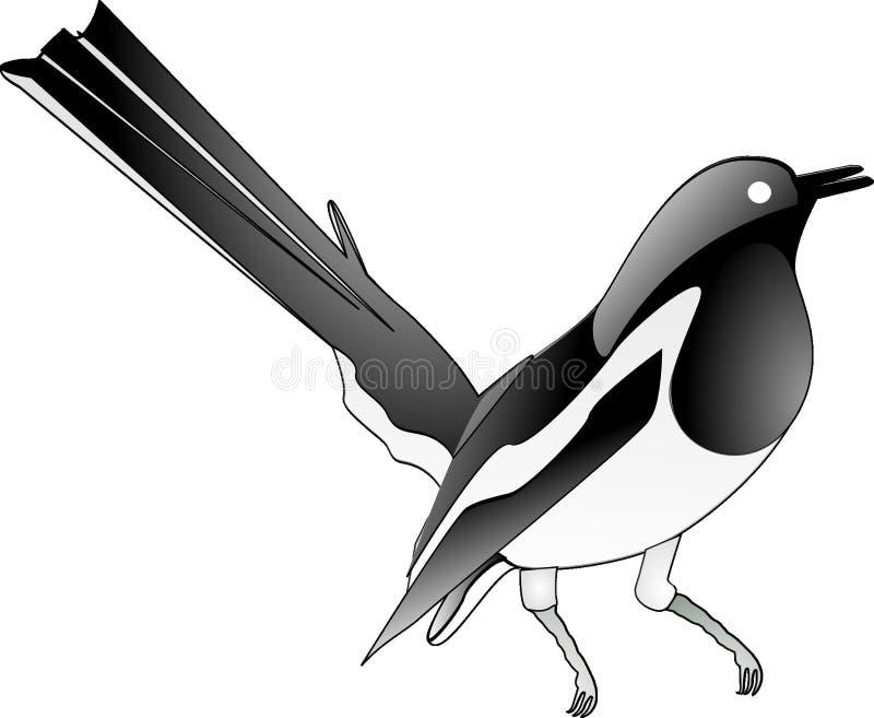 Bird, Beak, Black And White, Vertebrate stock photos