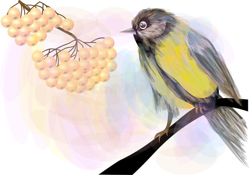 Bird and Berries. Tomtit and rowan stock illustration