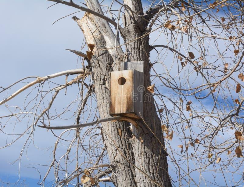 Bird box house for wood ducks stock image